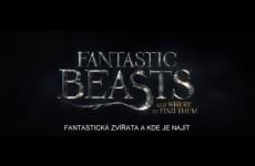 Oficiální trailer k filmu Fantastická zvířata a kde je najít [CZ titulky]