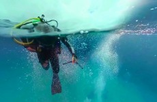 Pojďte si zaplavat se žraloky v interaktivním 360° videu od Discovery