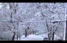 Veverka uklízí sníh: Šikovná hopsalka si dává záležet