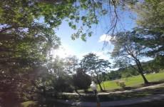 Veverka ukradla GoPro kameru a natočila tohle úžasné video v korunách stromů